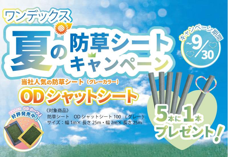 ワンデックス夏の防草シートキャンペーン!!